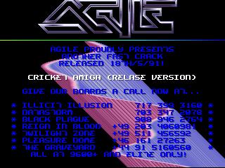 Agile – Cricket Amiga